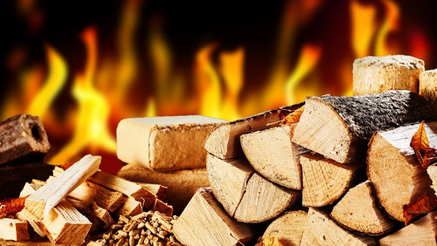Woman Needed More Wood for Her Fire